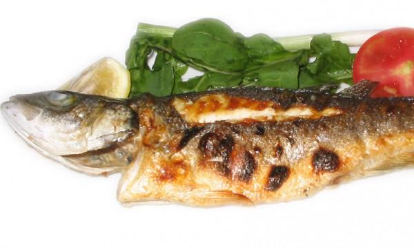 10 вкусни риби за отслабване