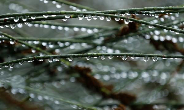 И понеделникът дъждовен, внимание на пътя