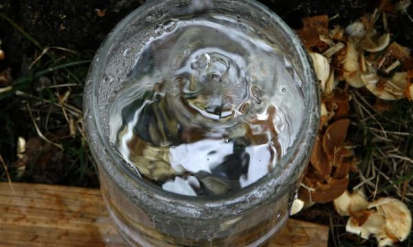 За какво е полезна водата от бреза?