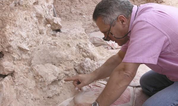 Учени: Хомо сапиенс се оказа на 300 000 години