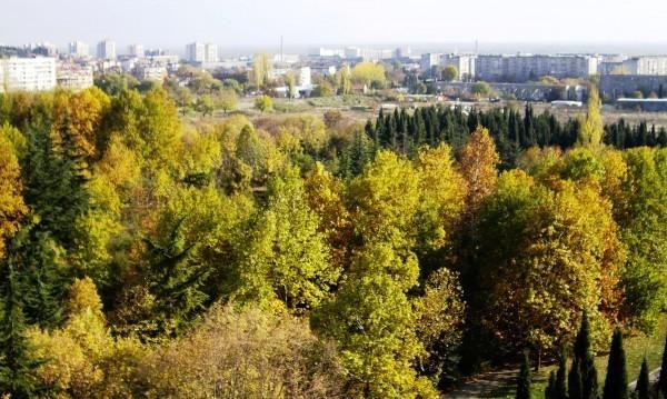 """143 172 души решават съдбата на """"Бедечка"""""""
