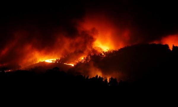57 жертви на огъня в Португалия, няма пострадали българи
