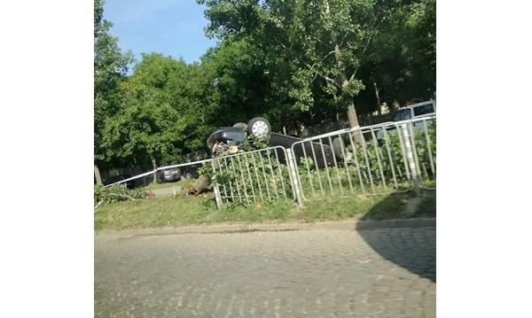 "Кола отсече дърво на бул. ""Цар Борис III"""