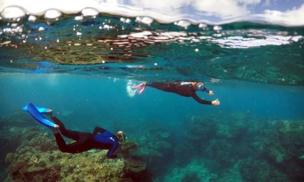 Големият бариерен риф е оценен на $42 млрд.