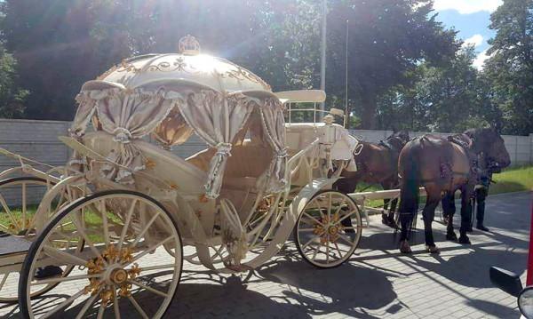 Оркестър и шоу пред родилно, взеха бебе със златна каляска