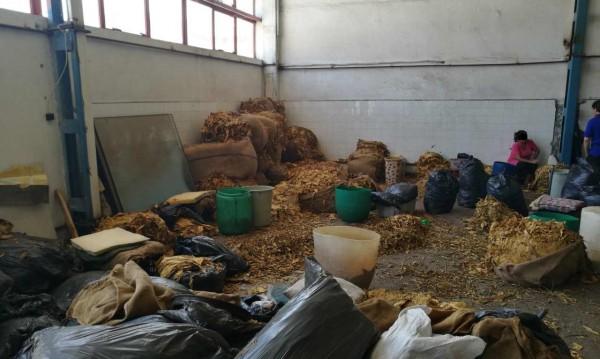 Откриха нелегална фабрика за тютюн в Пловдив