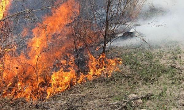 Дванадесет области в страната застрашени от пожари