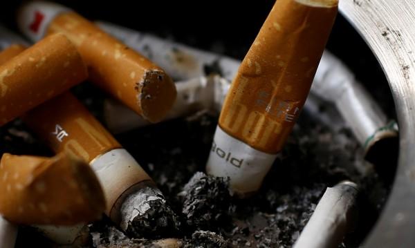 "Пожар край къмпинг ""Градина"" заради незагасена цигара"