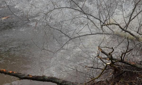 Глобиха трима кмета за непочистени речни корита