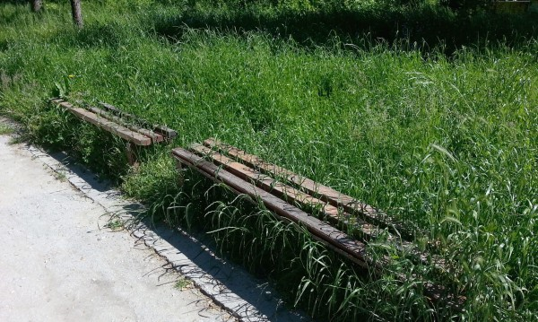 Ремонтът на Западния парк в София ще глътне над 10 милиона
