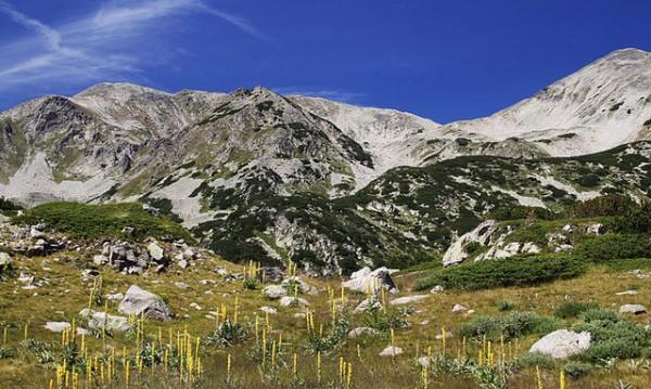 Знаете ли, че... Пирин е най-старият национален парк в България?