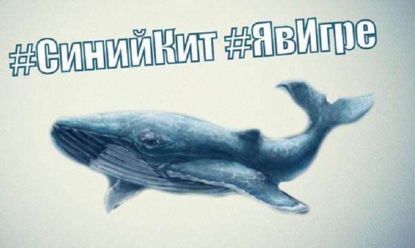 """Българче в САЩ се самоуби заради играта """"Син кит"""""""
