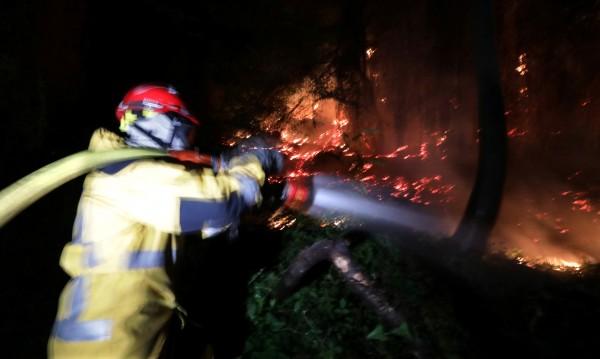 Десетки хиляди евакуирани в Канада заради горски пожари