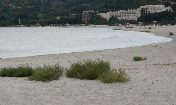 """18-годишен се удави в морето в """"Златни пясъци"""""""