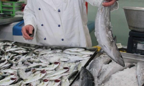 Каква риба ядем? Две трети се доставя от чужбина