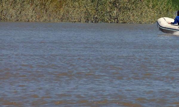 Въпреки забраната за къпане: Млада жена се удави в Дунав