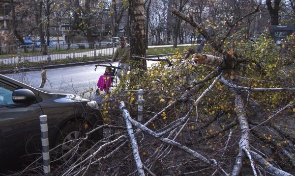 След бурята в София – потрошени клони, прелели реки