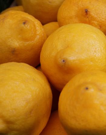 Лимон - кои са полезните му свойства?