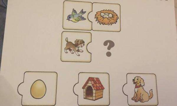 Кое е ухо? Къде спи кучето? Въпросите на теста за 3-годишните