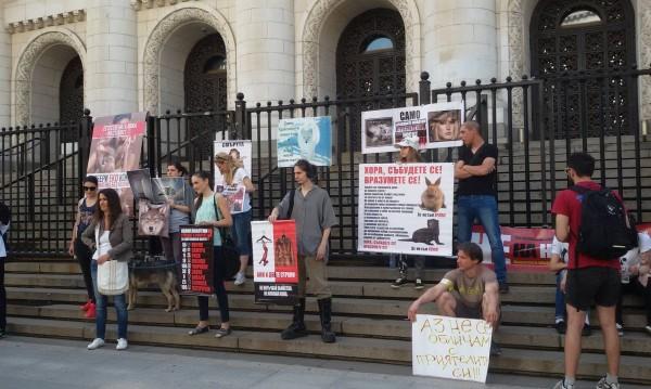 Вегани на протест: Спрете да убивате животните за кожи!