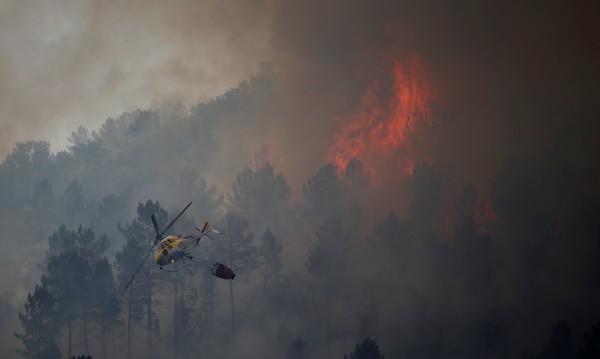 Пожари, горещини, суша в Португалия, невиждани от 2003 г.