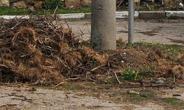 Баба върза внучето си с кабел, пречило й да копае градината