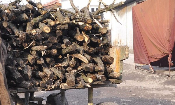 Горски спипа роми с каруци дърва, едва отърва боя