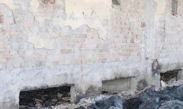Пожар погълна домашни животни в Севлиево