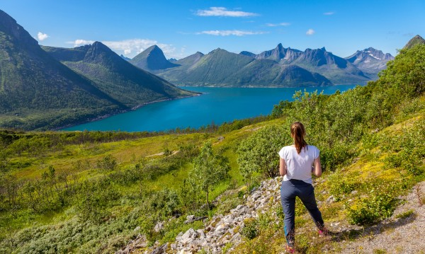 В планината: Горски аптечки за туристите