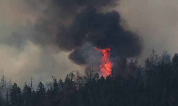 Деветнайсет горски пожара се сляха в един в Канада