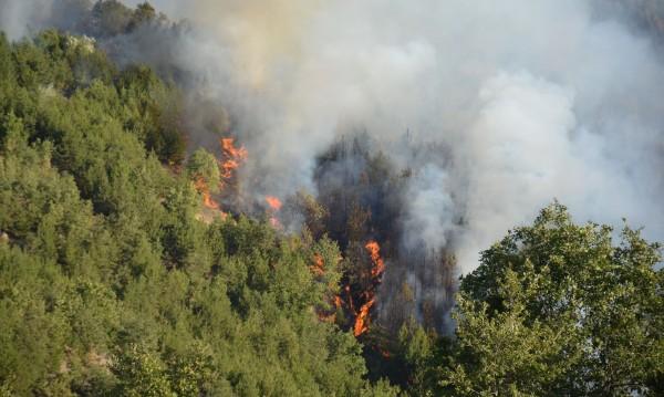 МВР смята: Пожари и наводнения гълтат 200 млн. годишно