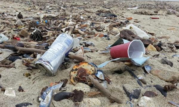 """Кой ще плаща за боклуците на плажа """"Корал""""?"""