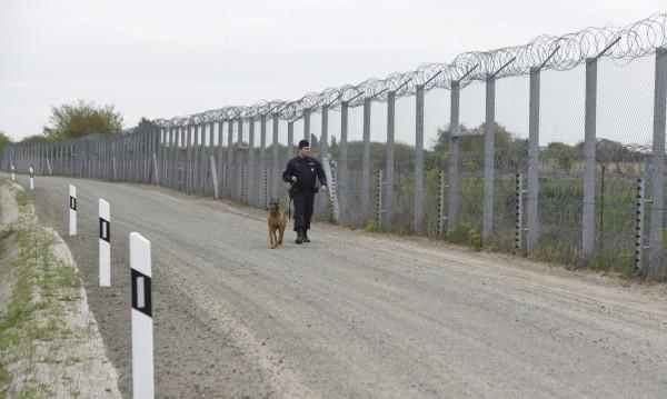 Юнкер отказа на Орбан пари за оградата с Хърватия и Сърбия