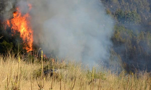Треви и храсти горят зад ТЕЦ-Север в Пловдив