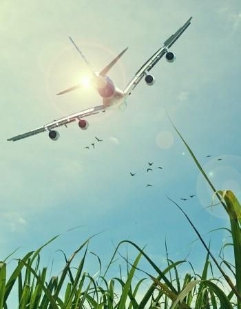Развързаният авиопазар - дар за туризма в България