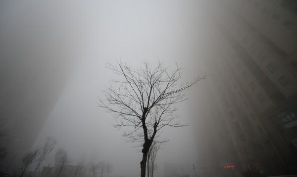 Климатичният колапс идва! 3 сценария за катастрофа на Земята
