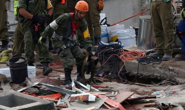 Отново: Нов трус с магнитуд 6,1 разлюля Мексико