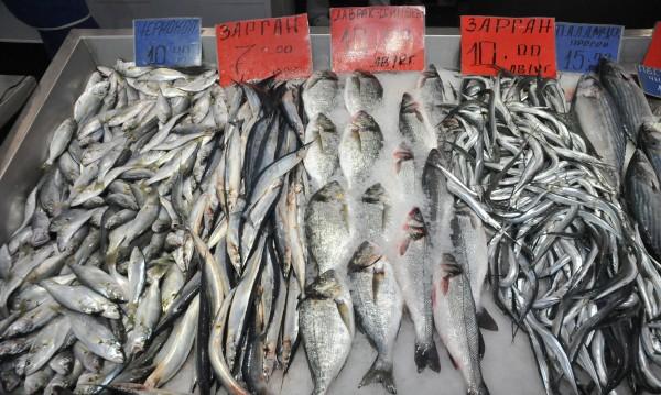 Рибата – полезна, но у нас продават и опасна