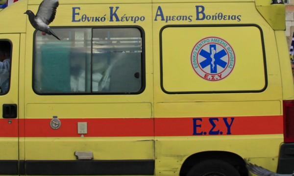 Жестокост, трагедия... Британка в Гърция – разкъсана от вълци