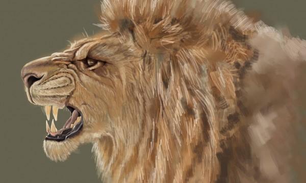 3 начина гневът да е полезен за живота ни. Кои са те?