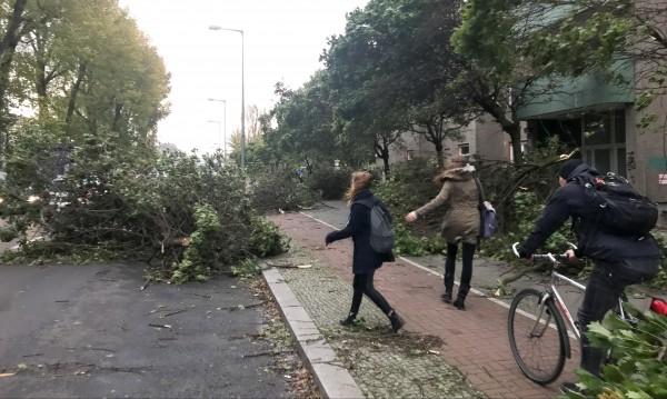Седем жертви взе буря в Германия
