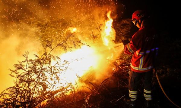 Португалия в траур за десетките жертви на пожарите