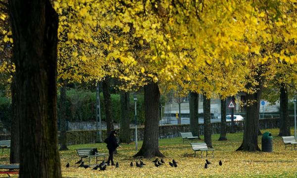 Слънчева есен, градусите днес ще стигнат до 26