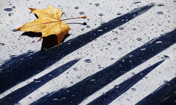 Вземете чадъра! Студ, дъжд и лек вятър и днес