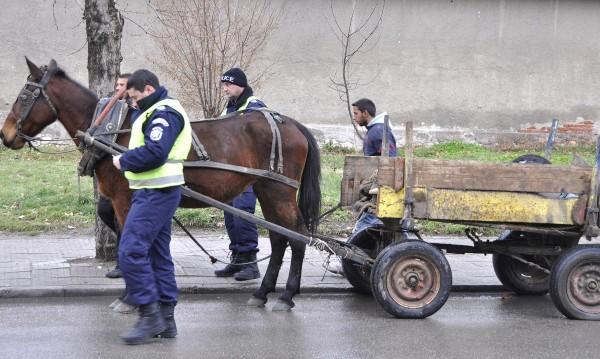 Роми готови: Като ни оставят без коне, сами ще се впрегнем!