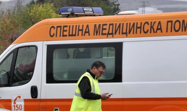 Двама загинаха при тежка катастрофа в Добричко