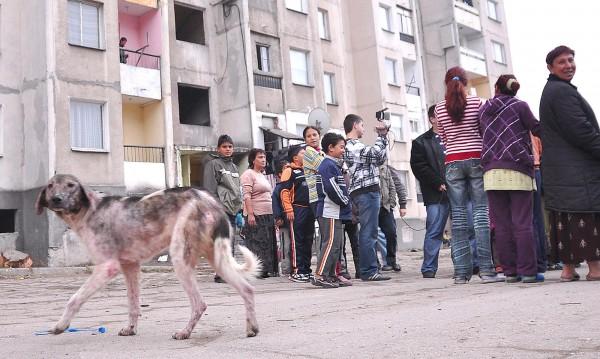 България не усвоява парите за ромите, да ги вземе Германия!