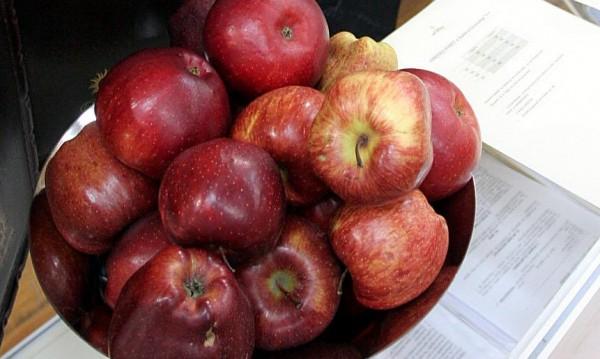 Ябълков апокалипсис: Нашите изчезват, ще хапваме полски