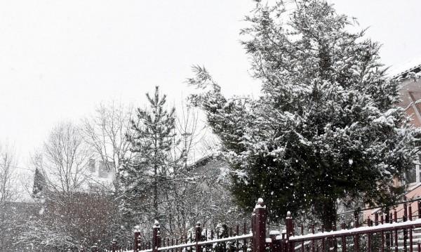 Зима иде: Тихо се сипе... Снегът в Пампорово