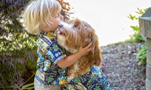 Истинска история за приятелството между човек и куче